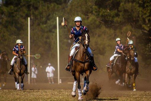 Sport, Horse, Polo Cross, Horseback, Competition