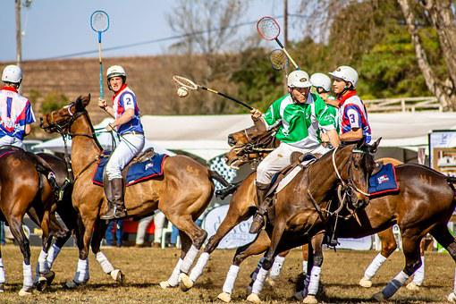 Sport, Polo Cross, Horse, Usa, Polo, Competition, Hobby