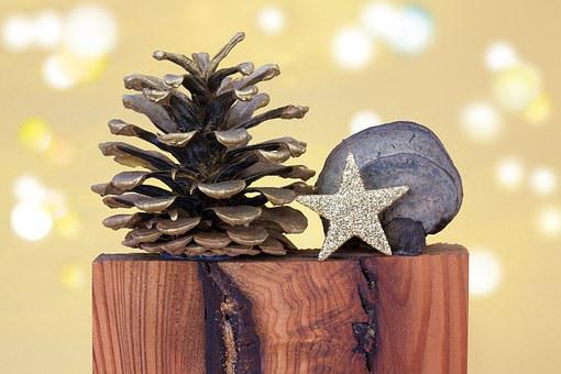Christmas, Pine Cones, Star, Baumschwamm, Wood