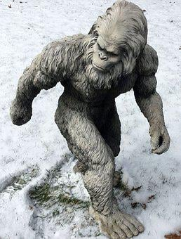 Bigfoot, Sasquatch, Yeti, Abominable Snowman, Skunk Ape