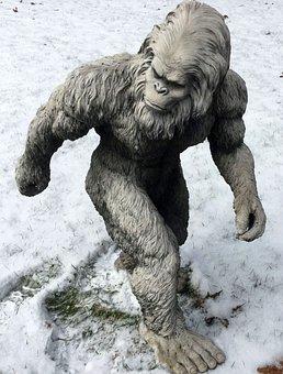 Bigfoot, Sasquatch, Yeti, Abominable Snowman, Skunk Ape