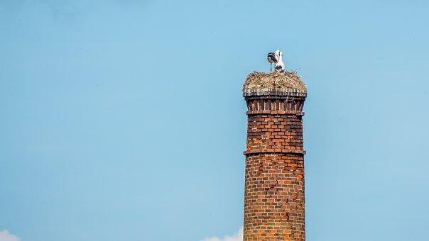 Stork, Nest, Stork Nest, Chimney, Sky, Blue, Nature