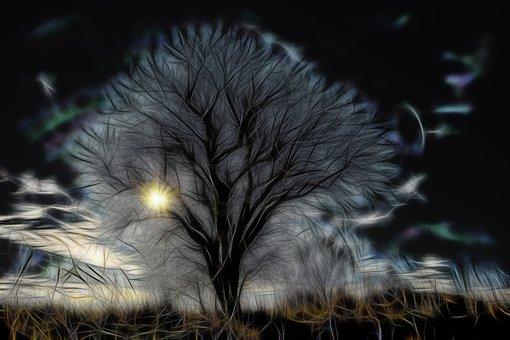 Abstract, Tree, Sun, Texture, Design
