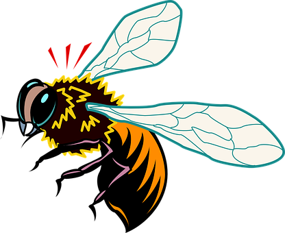 Bee, Insect, Wings, Startled, Bumblebee, Pollinate