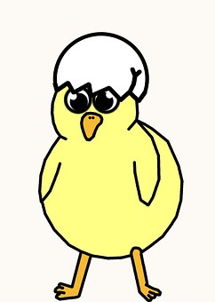 Chick, Chicken, Hatch, Egg, Hat, New, Easter, Spring