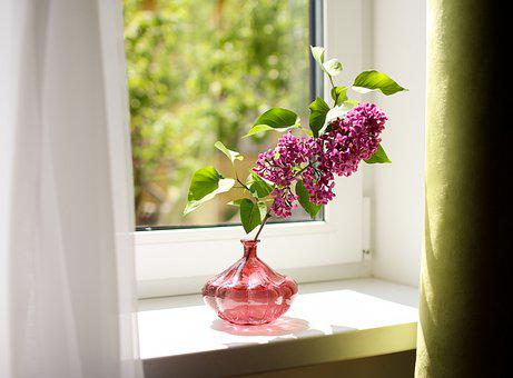 Lilac, Branch, Vase, On The Windowsill