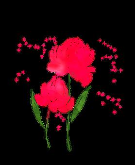 Watercolour Flowers, Watercolor Flower, Spring