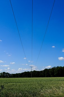 Outdoor, Field, Nature, Wire, Electric, Plant, Sun, Sky