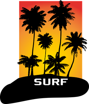 Palms, Vector, Silhouette, Sunset