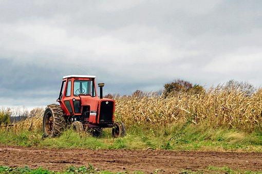 Autumn, Landscape, Fall, Nature, Tractor