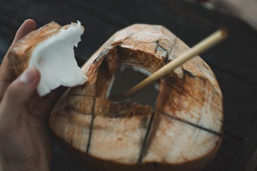 Coconut, Lombok, Indonesia, Landscape, Travel, Hiking
