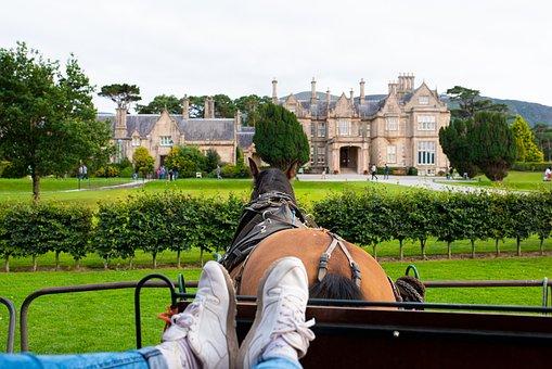 Equestrian, Ride, Horse, Castle, Mare, Tower