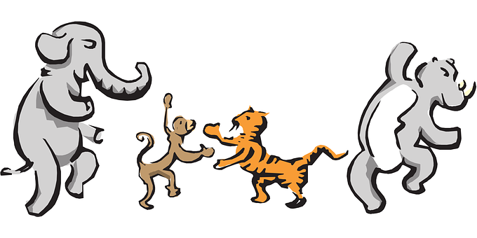 Animals, Monkey, Elephant, Tiger, Dancing, Rhino, Dance