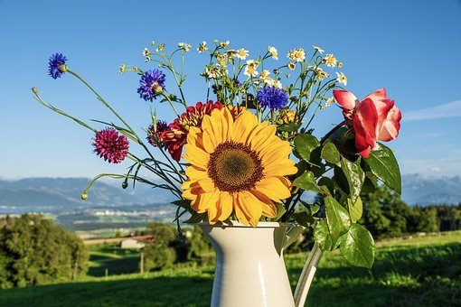 Bouquet Of Flowers, Flowers, Sunflower