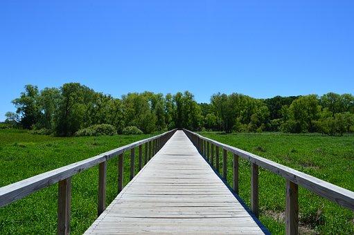 Path, Journey, Nature, Landscape