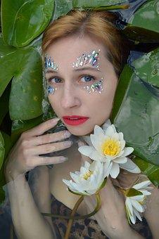 Water Lilies, Lotus Flowers, Lotus