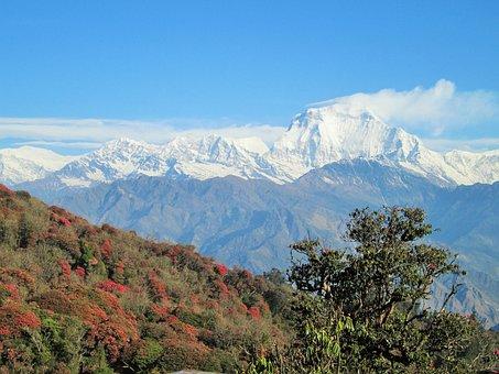 Himalaya, Nepal, Himalayas, Country Nepal, Nature