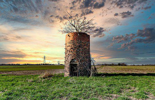 Silo, Tree, Rural, Country, Outdoors, Field