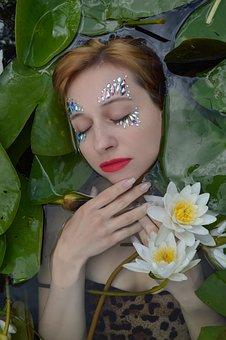Water Lilies, Lotus Flowers, Lotus, Flower