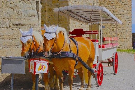Carcassonne, Horses, Truck, Horse Cart, Animals, Old