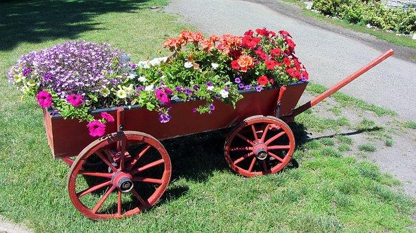 Car, Flower Pot, Summer, Garden, Flowers, Flower