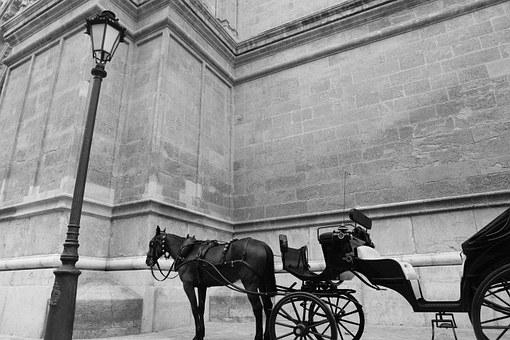 Horse Carriage, Carriage, Horses, Vintage