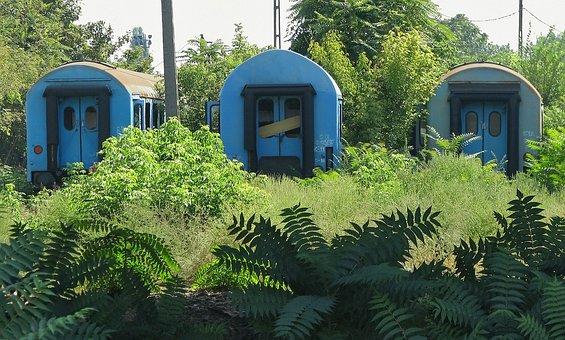 Train, Green Space, Old Wagon Train, Wagon Cemetery