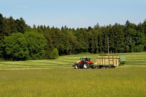 Bauer, Agriculture, Tractor, Trailers, Hay, Harvest