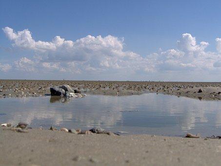 Ebb, Wadden Sea, Watt Bottom, Sea, National Park