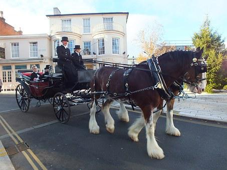 Horse And Carriage, Dray, Carriage, Shire Horses
