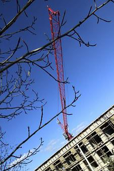 Bulding, Sky, Tree