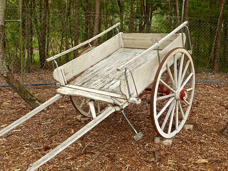 Buggy, Cart, Horse, Two Wheel, Vehicle, Transport