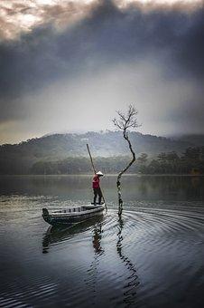 Tree, Fisherman, Fishing, Lake