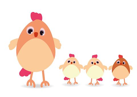 Hen, Chicken, Poultry, Livestock