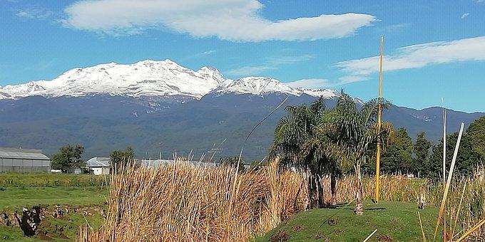Montaña, Arboles, Naturaleza
