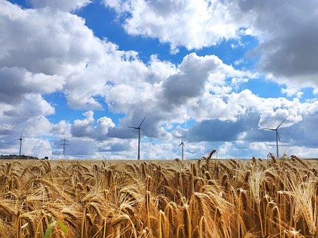 Field, Wind Power, Sky, Clouds, Energy