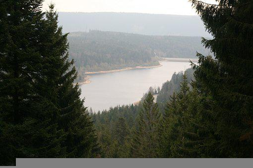 Forest, Lake, Mountains, Landscape