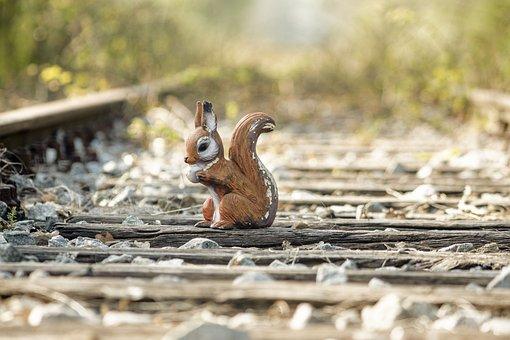 Train, Rails, Squirrel, Railway Tracks, Track Bed, Rail