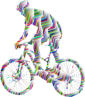 Man, Bike, Bicycle, Drive, Ride, Vehicle
