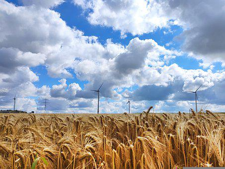 Field, Wind Power, Sky, Clouds, Energy, Power Supply