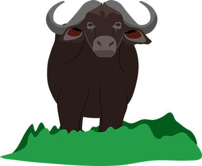 African Buffalo, Buffalo, Africa, Wildlife, Horns
