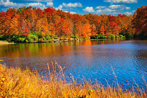 Fall, Color, Foliage, Water, Lake, West Virginia
