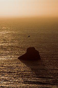 Horizon, Rock, Seagull, Sky, Landscape, Sea, Beach