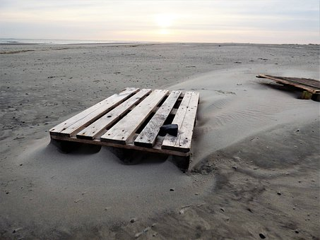 Wood, Sand, Sea, Beach, Water, Landscape, Alone, Lonely