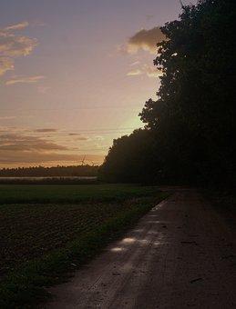 Away, Wet, Nature, Puddle, Lane, Light, Mood, Trees