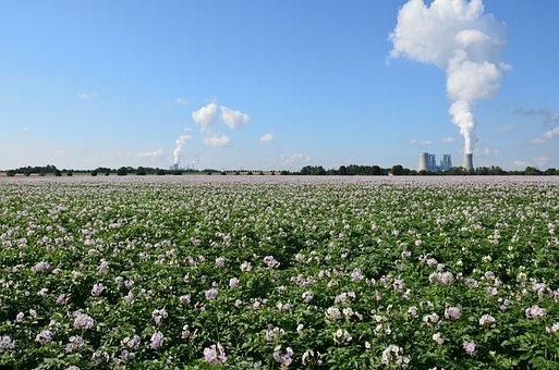 Landscape, Field, Agriculture, Power Plant, Nature