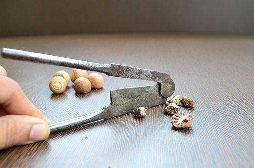 Nut Cracker, Betel Nut Cracker, Nut