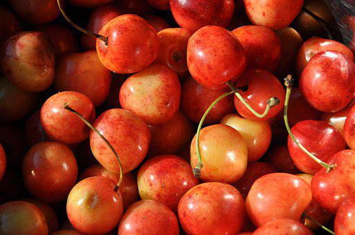Cherries, Red, Orange, Yellow, Fresh, Fruit, Healthy