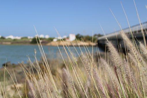 The Port Of Santa Maria, Salinas, Salina Homeless