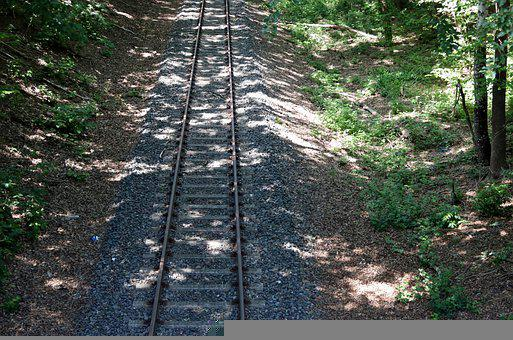 Railway, Sun, Shadow, Nature, Trees, Bushes
